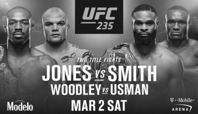 UFC 235 Event Poster